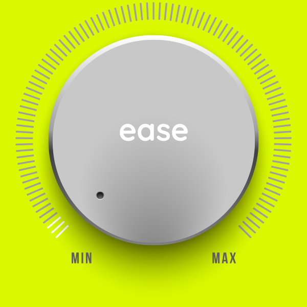DAY experience factor ease