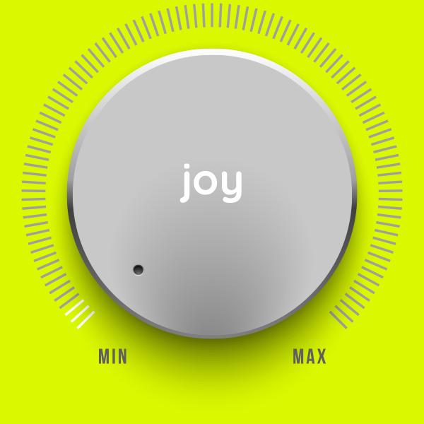 DAY experience factor joy